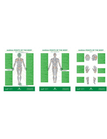 Marma Therapy Chart (Set of 3) By Dr. S. Ajit (BAMS)
